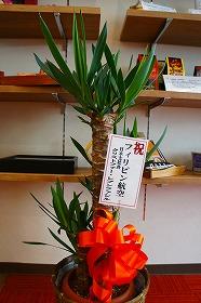 東京支店移転の画像41