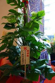 東京支店移転の画像46