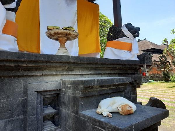 ジャガナタ寺院6.jpg