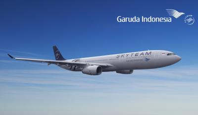 GA-A333-wz-sky.png
