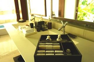 ザ・バレ シングルパビリオン 洗面台