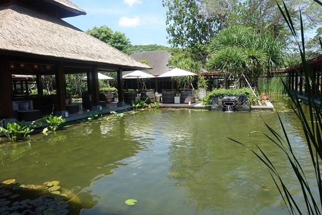 ハイアット リージェンシー バリ シャンカスパ 涼し気な池