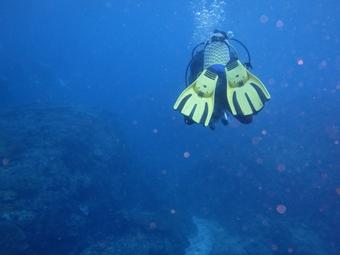 ペニダ島マンタポイントファンダイビングの画像9