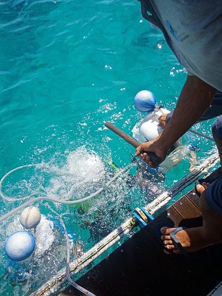 バリハイビーチクラブクルーズ アクアノット いざ水中の世界
