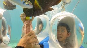 海系のオプショナルツアー、人気NO.1! マリンアクティビティを一日中楽しめる!